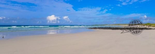 galapagos plage tortuga bay