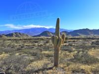 Travel Photography - Argentina Cafayate 0/0 | axetrip.com