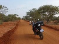 Travel Photography - Botswana Stevensford Game Reserve 0/0 | axetrip.com
