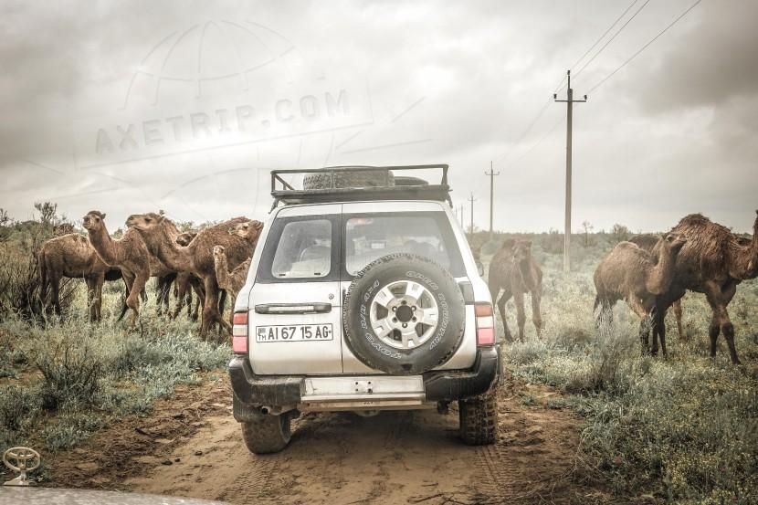 Turkmenistan Road Trip  | axetrip.com